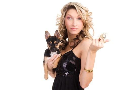 cucciolo di cane quanto mi costi?
