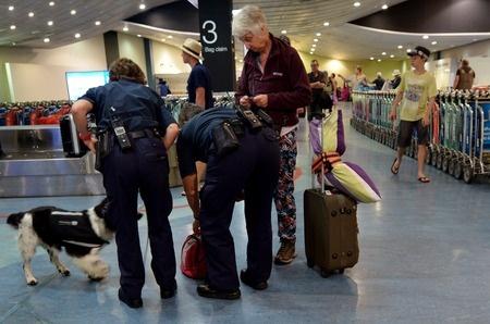cane in aeroporto, controllo parassiti e antidroga