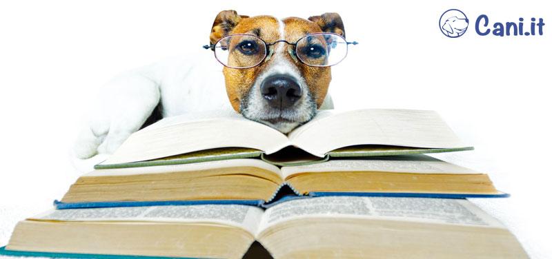 Enciclopedia e libri sulle razze canine