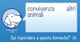 Convivenza cane e altri animali