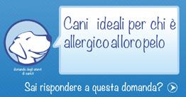 pelo del cane per chi è allergico