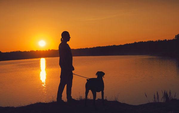 Passeggiare al tramonto con cane