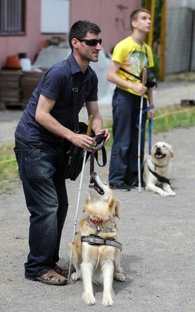 cane che aiuta un non vedente