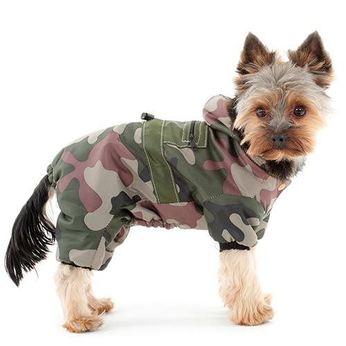 Abbigliamento cane