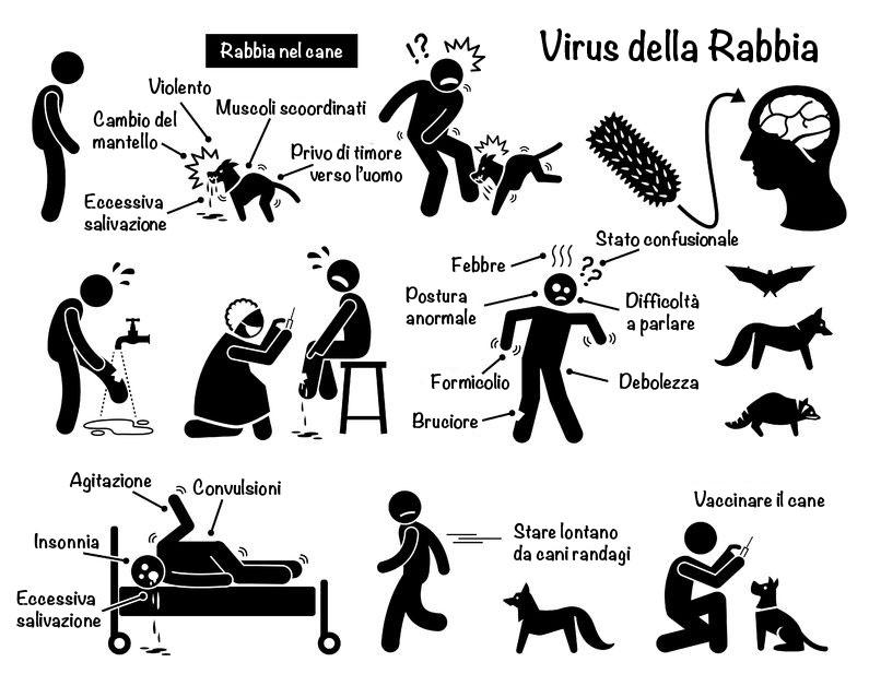 giardia cane contagio uomo)