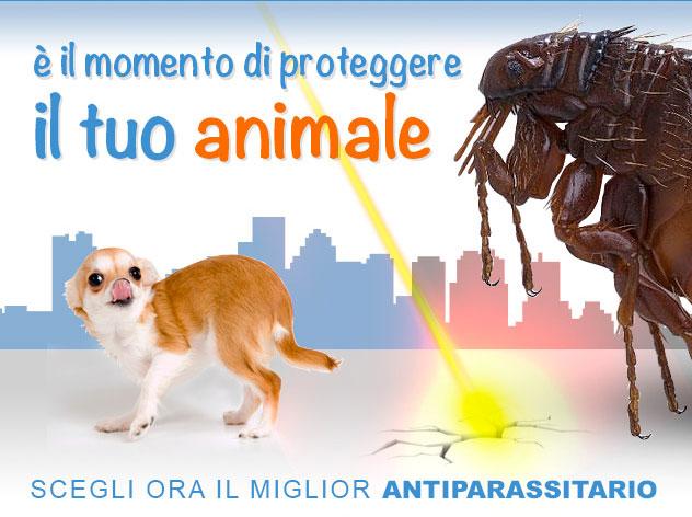 Antiparassitari per cane