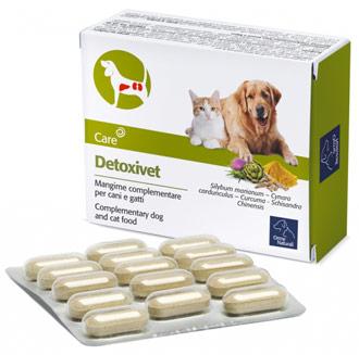 Depur l'intestino del tuo pet con Detoxivet