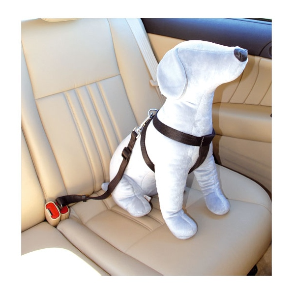 pettorina di sicurezza per auto